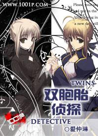 双胞胎侦探